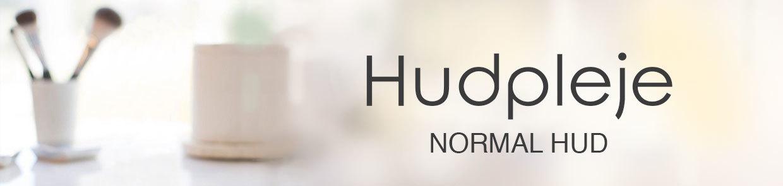 Normal hud