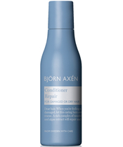 Björn Axén Repair Conditioner 75 ml