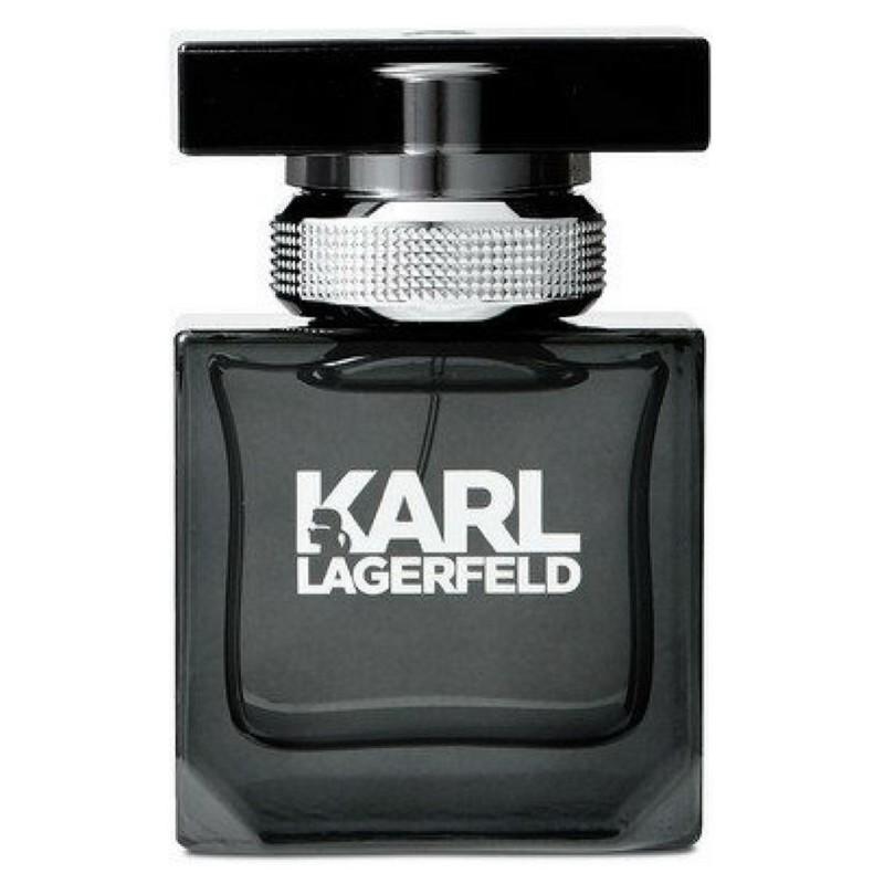 Lagerfeld Karl lagerfeld pour homme edt 100 ml på nicehair.dk