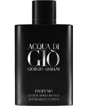 Giorgio Armani Acqua Di Giò Profumo After Shave Lotion 100 ml