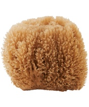 Meraki Natural Sea Sponge