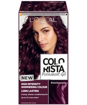 L'Oréal Paris Colorista Permanent Gel #darkpurple